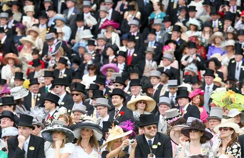 Ascot, taramul palariilor www.mauvert.com