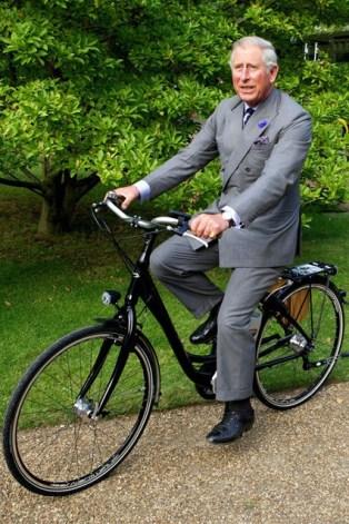 Barbati care ne inspira: PRINTUL CHARLES www.mauvert.com